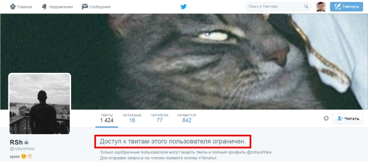 как читать закрытый твиттер не подписываясь на пользователя