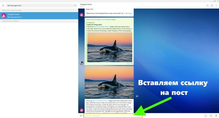 Как скопировать пост в Инстаграме с текстом бот